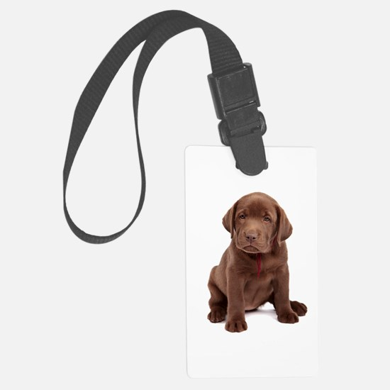 Chocolate Labrador Puppy Luggage Tag