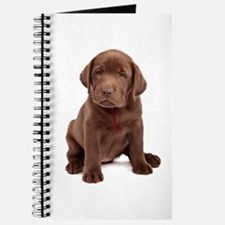 Chocolate Labrador Puppy Journal