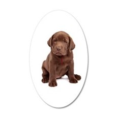 Chocolate Labrador Puppy Wall Decal