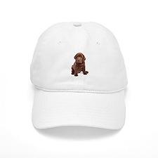 Chocolate Labrador Puppy Baseball Baseball Cap