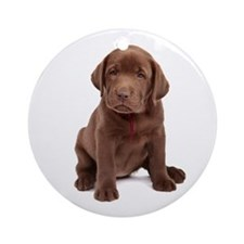 Chocolate Labrador Puppy Ornament (Round)
