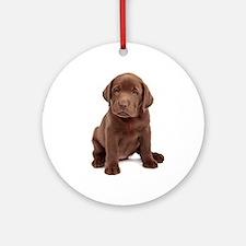 Chocolate Labrador Puppy Ornament (Round)