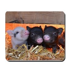 Three Little Piggies Mousepad