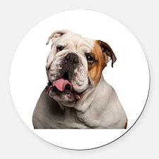 Bulldog Round Car Magnet