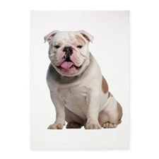 Bulldog 5'x7'Area Rug