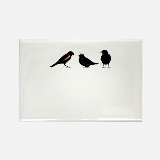 3 little birds Rectangle Magnet