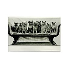 Dogs On A Couch Rectangle Magnet (10 pack)