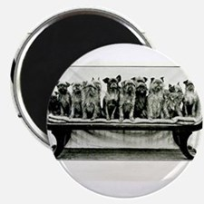 """Dogs On A Couch 2.25"""" Magnet (10 pack)"""