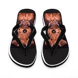 Airedale terrier Flip Flops
