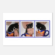Coffee Cup Kitten Postcards (Package of 8)