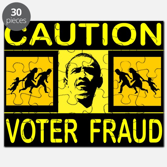 VOTER FRAUD Puzzle