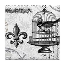 Vintage french shabby chic bird and birdcage colla