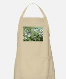 Cool waterdrops on a grean leaf Apron