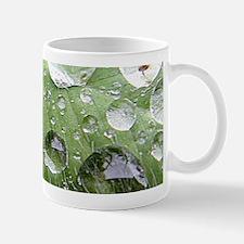 Cool waterdrops on a grean leaf Mug