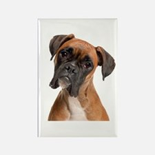 Boxer Rectangle Magnet