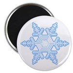Flurry Snowflake X Magnet