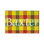 Tartan - Baxter Rectangle Magnet (100 pack)