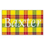Tartan - Baxter Sticker (Rectangle 10 pk)