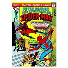 Peter Parker, The Spectacular Spider-Man (Return O Canvas Art
