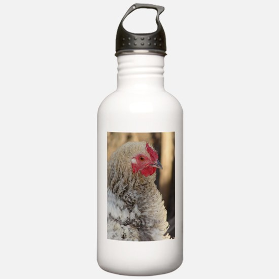 Frizzle Rooster Water Bottle