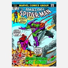 The Amazing Spider-Man (The Green Goblin's Last St