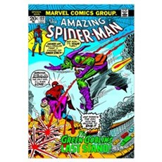 The Amazing Spider-Man (The Green Goblin's Last St Framed Print
