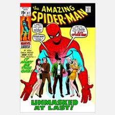 The Amazing Spider-Man (Unmasked At Last!)