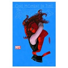 One Moment In Time The Amazing Spider-Man Poster