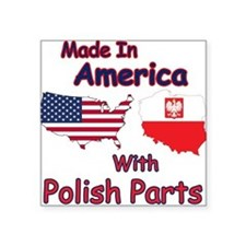 America With Polish Parts Sticker