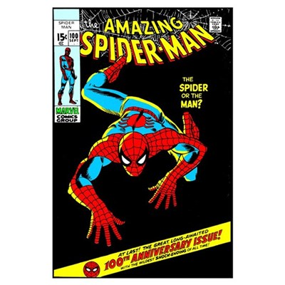 The Amazing Spider-Man (The Spider Or The Man?) Poster