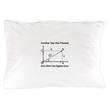 I Didn't Use Algebra Once Pillow Case