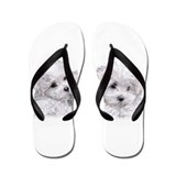 Bichon dog Flip Flops