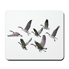 Geese landing on pond Mousepad