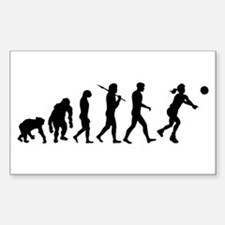 Evolution of Volleyball Decal