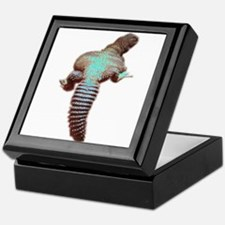spiny-tailed lizard Keepsake Box