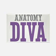 Anatomy DIVA Rectangle Magnet