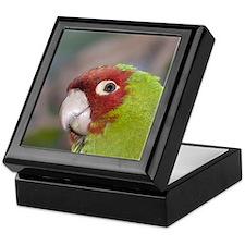 Parrot Keepsake Box