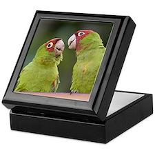 2 Parrots Keepsake Box