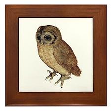Little Owl by Durer Framed Tile