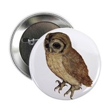 "Little Owl by Durer 2.25"" Button"