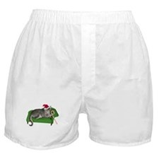 Christmas Cat Couch Boxer Shorts