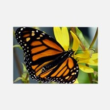 Butterfly - Rectangle Magnet