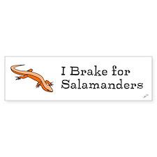 I brake for salamanders