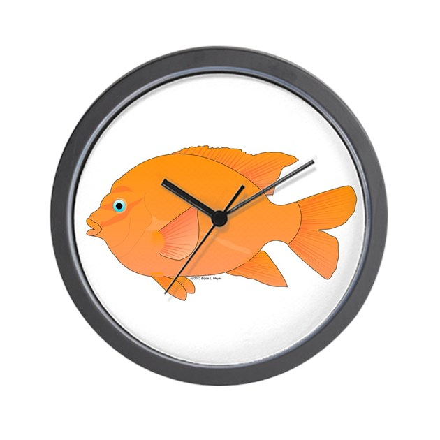 Garibaldi damselfish fish wall clock by for Fish wall clock