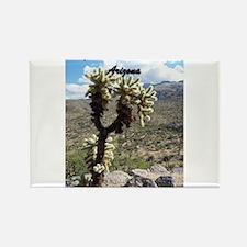 Saguaro National Park - Tucson, AZ Rectangle Magne