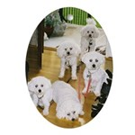 FIVE BICHONS ADORABLE HANDFUL Oval Ornament