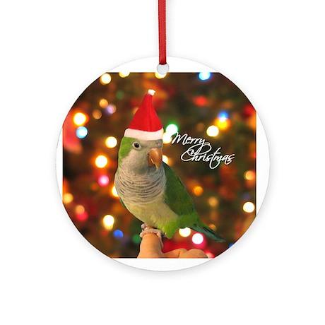 Merry Christmas Santa Quaker Parakeet Ornament