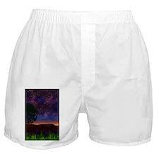 The Nightsky Boxer Shorts