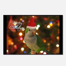 Quaker Parakeet Christmas Postcards (8 Pack)