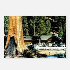 Retro Red Wood Park Postcards (Package of 8)